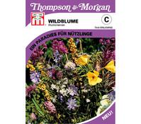 Thompson & Morgan Samen Wildblume 'Blumenwiese'