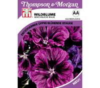 Thompson & Morgan Samen Wildblume 'Gewöhnliche Malve'