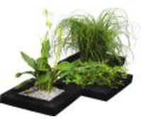 Treibring für Wasserpflanzen