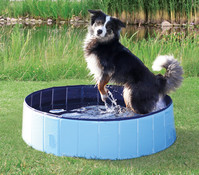 Trixie Hundepool, 120 x 30cm, blau