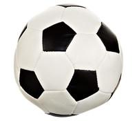 Trixie Hundespielzeug Soft-Soccer Ball, Ø 11 cm
