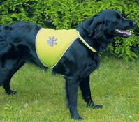 Trixie Safer Life Sicherheitsweste für Hunde