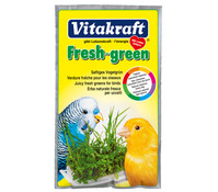 Vitakraft Fresh-green, Vogelgrün für Sittiche und Kanarienvögel, 40 g