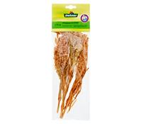 Vogelfutter Dehner Rispenhirse, 15 g