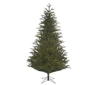 Weihnachtsbaum Tanne Frasier, ca. 170 cm hoch