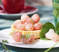 Weiße Ananas-Erdbeere