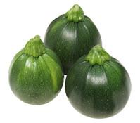 Zucchini 'Eight Ball'