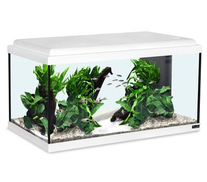 aquatlantis Aquarium Advance 60 LED Set