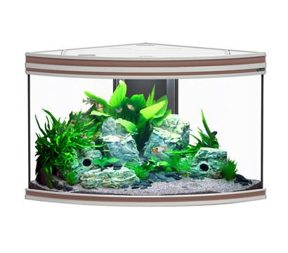 aquatlantis fusion corner 100 aquarium dehner garten center. Black Bedroom Furniture Sets. Home Design Ideas