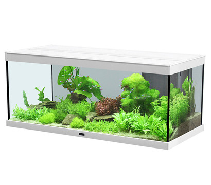 aquatlantis style led 100x40 aquarium dehner garten center. Black Bedroom Furniture Sets. Home Design Ideas