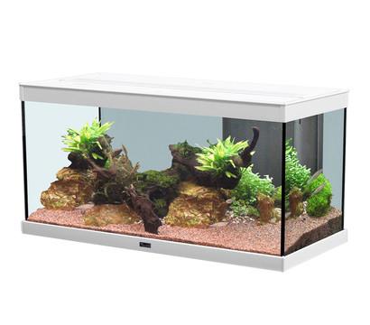 aquatlantis style led 80x35 aquarium dehner garten center. Black Bedroom Furniture Sets. Home Design Ideas