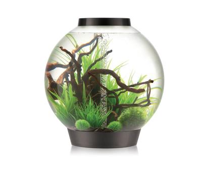 biOrb® Aquarium CLASSIC 105 MCR