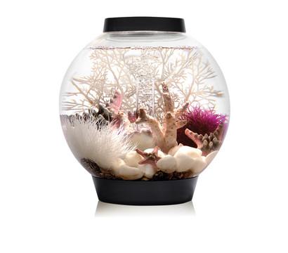 biOrb® Aquarium CLASSIC 15 MCR