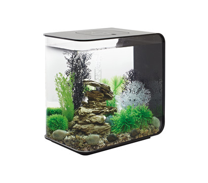 biOrb® Aquarium FLOW 30 LED