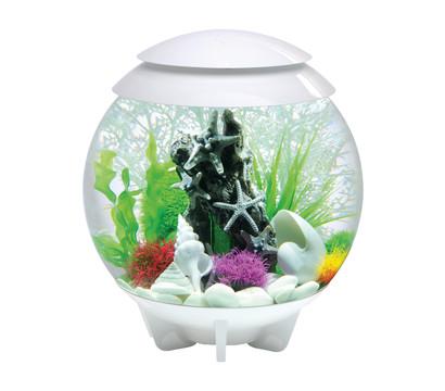 biOrb® Aquarium HALO 30 LED