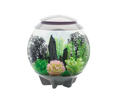 biOrb® Aquarium HALO 30 MCR