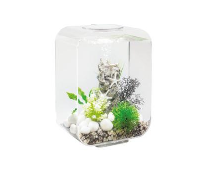biOrb® Aquarium LIFE 15 MCR