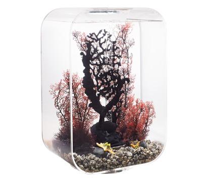 biOrb® Aquarium LIFE 45 MCR