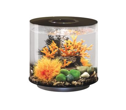 biOrb® Aquarium TUBE 15 LED
