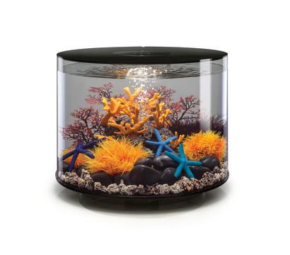 biOrb® Aquarium TUBE 35 MCR