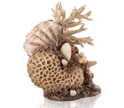 biOrb® Aquariumdeko Korallen-Muschel Ornament Natural