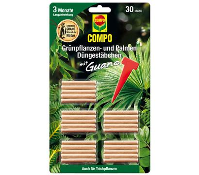 COMPO Düngestäbchen für Grünpflanzen - und Palmen