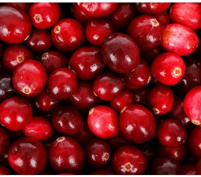Cranberry 'Cranny'