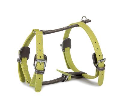 Das Lederband Hundegeschirr Style Amsterdam Lime/Lava