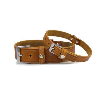 Das Lederband Hundehalsband Basic Weinheim Kastanie