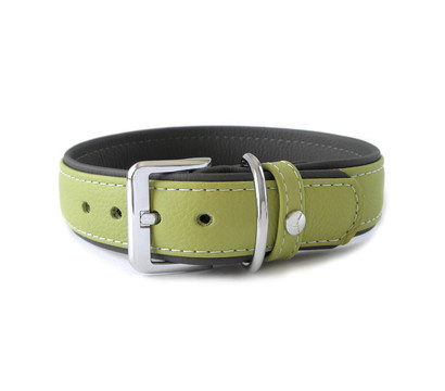 Das Lederband Hundehalsband Style Amsterdam Lime/Lava