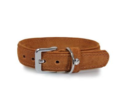 Das Lederband Hundehalsband Style Toronto Cognac