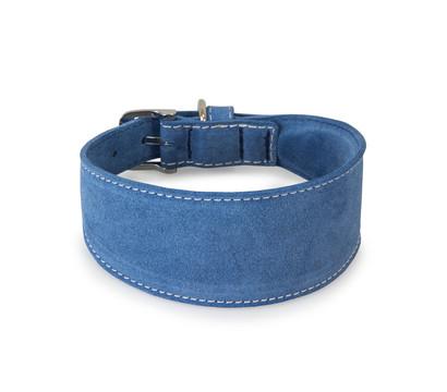 Das Lederband Windhundhalsband Style Toronto Jeans