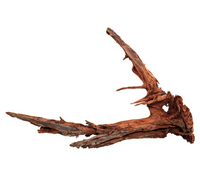 Dehner Aqua Mangrovenwurzel X-large
