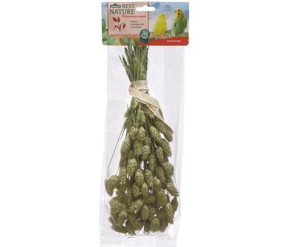 Dehner Best Nature Kanariensaat, 50 g