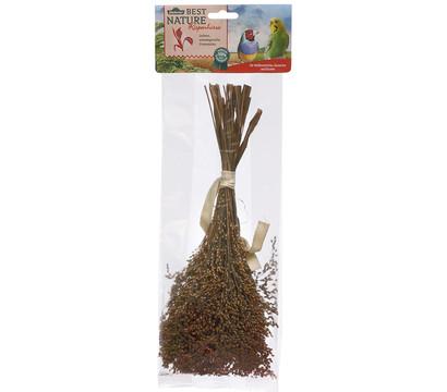 Dehner Best Nature Rispenhirse für Vögel, 50 g