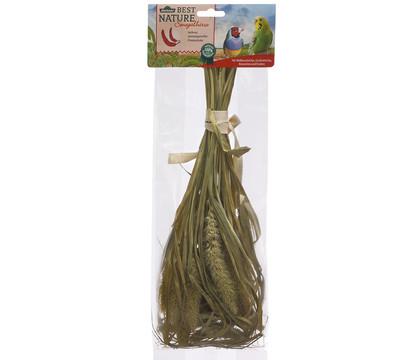 Dehner Best Nature Senegalhirse, 50 g