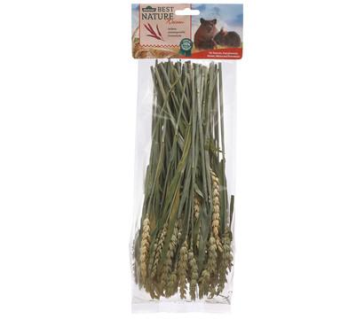 Dehner Best Nature Weizen für Nager, 75 g