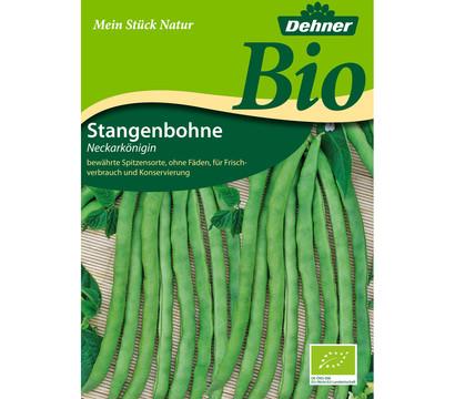 Dehner Bio Samen Stangenbohnen 'Neckarkönigin'