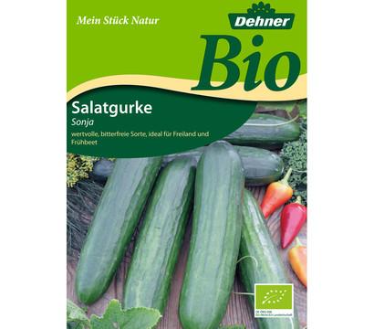 Dehner Bio-Samen Salatgurken 'Sonja'