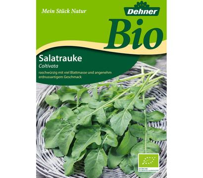 Dehner Bio-Samen Salatrauke 'Coltivata'