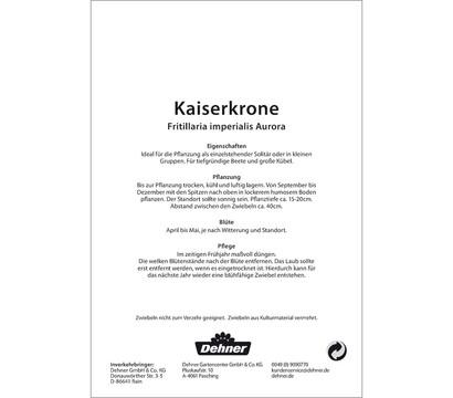 dehner blumenzwiebel kaiserkrone 39 fritillaria imperialis. Black Bedroom Furniture Sets. Home Design Ideas