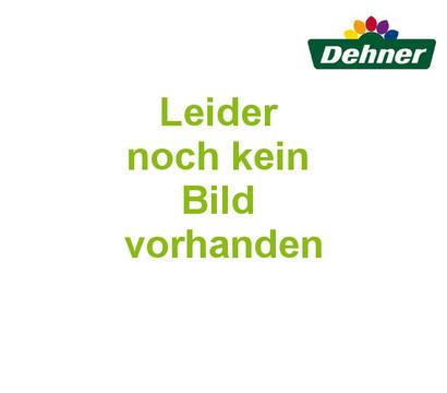 Dehner Gartentrolley, 54 x 58 x 89 cm