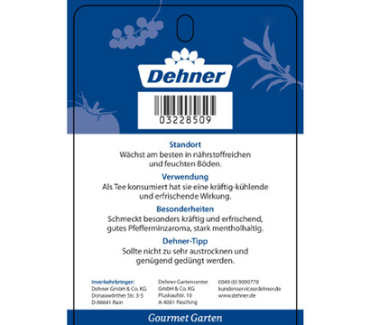 dehner gourmet garten englische minze 39 diana 39 dehner garten center. Black Bedroom Furniture Sets. Home Design Ideas