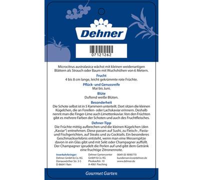 dehner gourmet garten fingerlimette dehner garten center. Black Bedroom Furniture Sets. Home Design Ideas