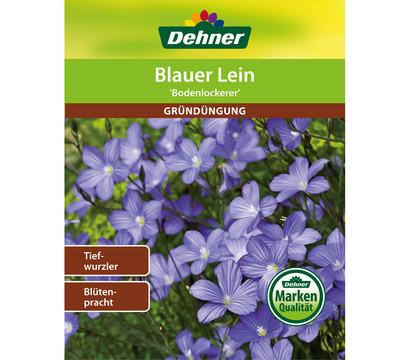 Dehner Gründüngung Blauer Lein