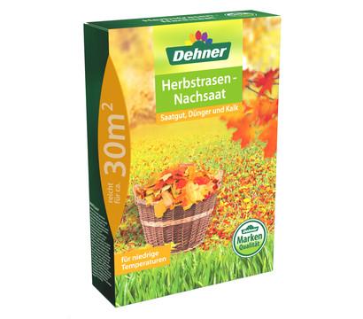 Dehner Herbstrasen-Nachsaat