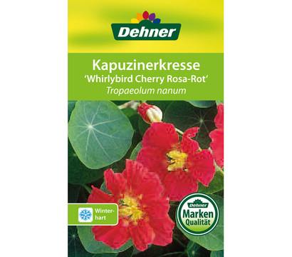 dehner kapuzinerkresse 39 whirlybird cherry rose 39 dehner. Black Bedroom Furniture Sets. Home Design Ideas