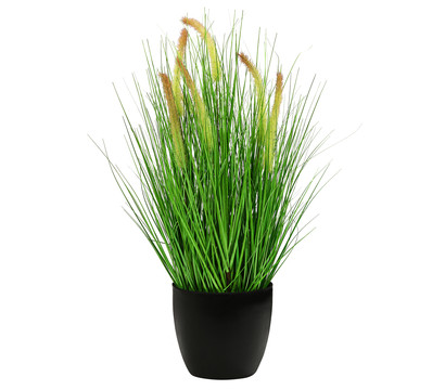 Dehner Kunstpflanze Borstenhirse, 68 cm