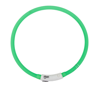 Dehner LED-Leuchthalsband Beamie
