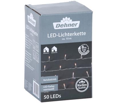 Dehner LED-Lichterkette 50 LEDs, warmweiß